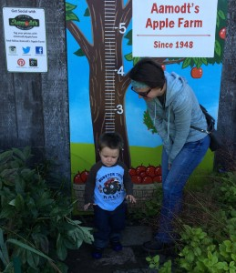 Apple Orchard Trip 2015
